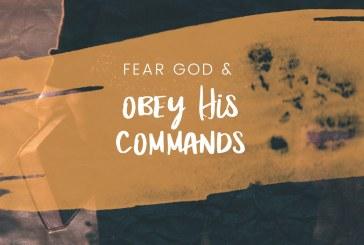 November 15th – Ecclesiastes 12:13