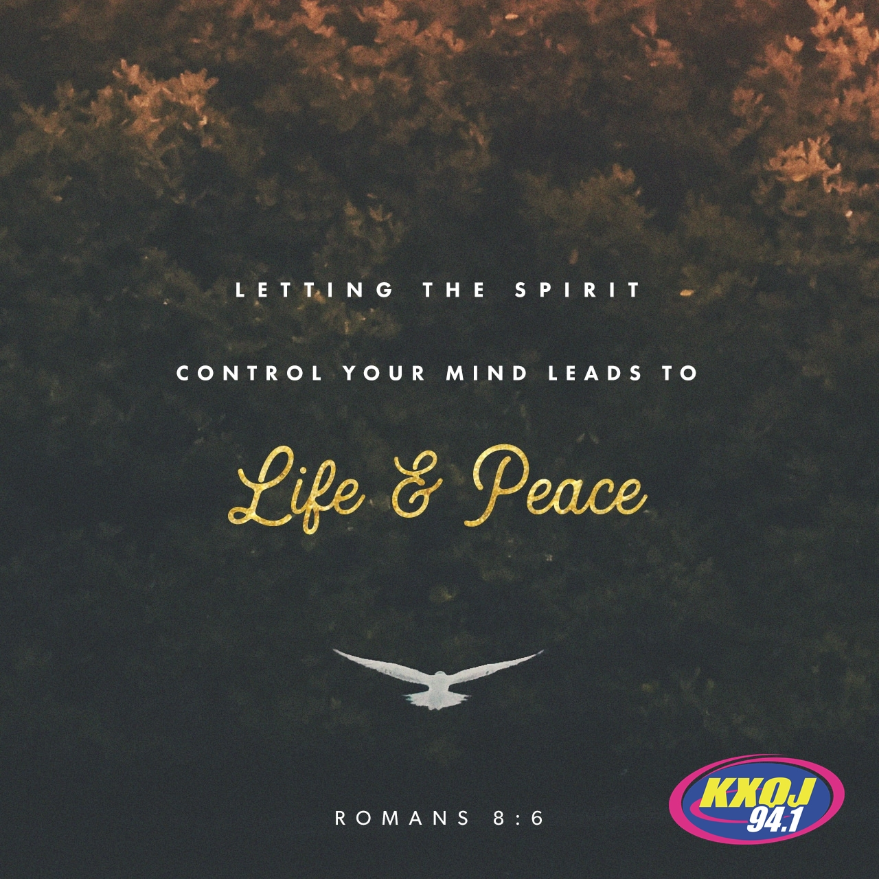 May 23rd - Romans 8:6