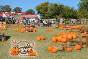 Sand Springs Pumpkin Patch